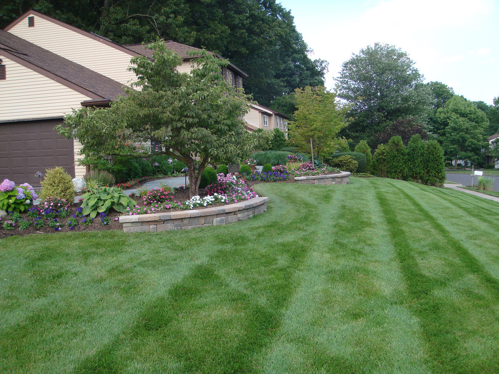 A Guide To Aerating Your Lawn